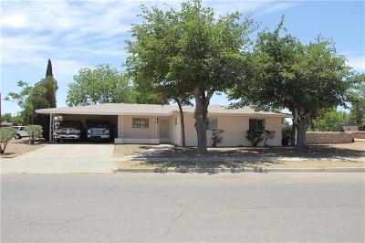 El Paso Single Family Home For Sale: 9840 Heather Avenue