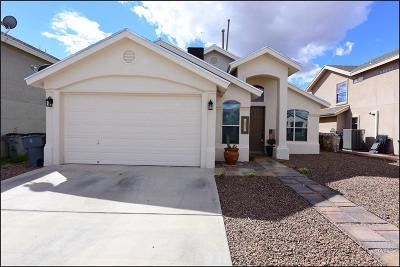 Single Family Home For Sale: 10941 Duster Drive