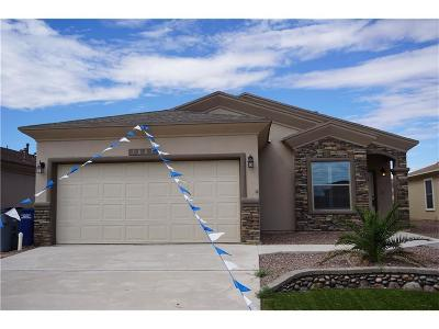 El Paso Single Family Home For Sale: 13649 Mill Hill Court