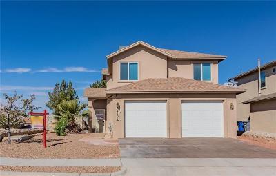 Single Family Home For Sale: 14101 Jason Crandall Drive