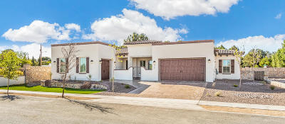 El Paso Single Family Home For Sale: 517 Cotton Field Drive