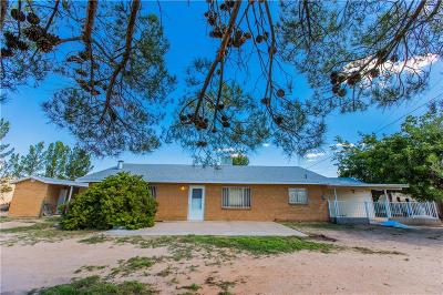 Socorro Single Family Home For Sale: 10813 Thunder Road