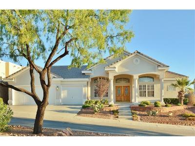 El Paso Single Family Home For Sale: 6020 Ojo De Agua Drive