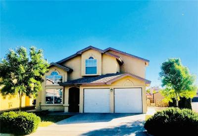 El Paso Single Family Home For Sale: 10800 Desert Sands Pl.