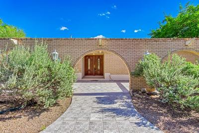 El Paso Single Family Home For Sale: 4380 Boy Scout Lane