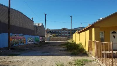 El Paso Single Family Home For Sale: 2017 Central Avenue