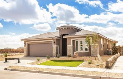 El Paso Single Family Home For Sale: 12504 Breeder Cup Way