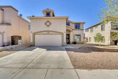 Single Family Home For Sale: 3107 Amistoso Street
