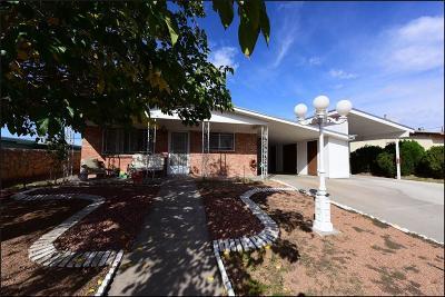 El Paso Single Family Home For Sale: 719 La Paz Drive