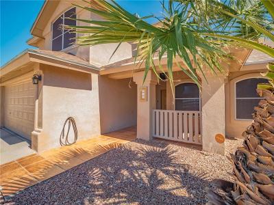 El Paso Single Family Home For Sale: 316 Alex Nicholas