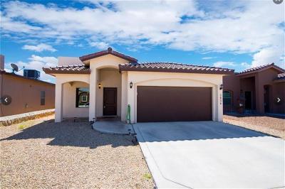 Single Family Home For Sale: 3836 Loma Brisa Drive