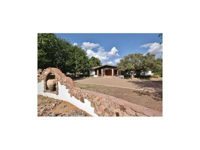 El Paso Single Family Home For Sale: 5400 Davis Cup Court