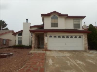 El Paso Single Family Home For Sale: 7237 Feather Hawk Drive