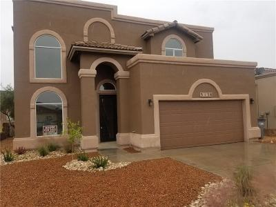 Single Family Home For Sale: 3138 Blue Dirt Circle