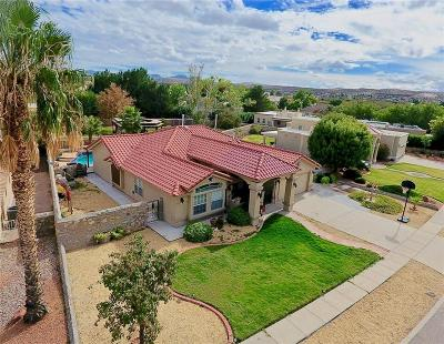 El Paso Single Family Home For Sale: 624 Coral Willow Drive