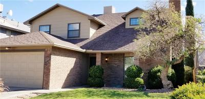 Vista Hills Single Family Home For Sale: 11724 Teachers Drive