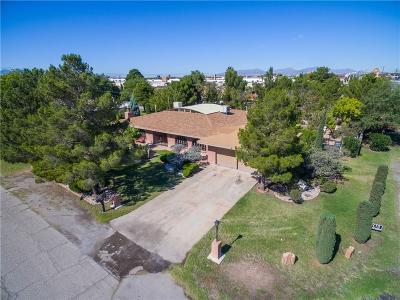 El Paso Single Family Home For Sale: 749 Londonderry Road