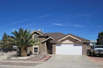 Horizon City Single Family Home For Sale: 14001 Desert Wildflower Place