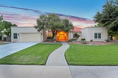 El Paso Single Family Home For Sale: 645 Willow Glen Drive