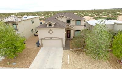 Single Family Home For Sale: 12980 Cozy Cove
