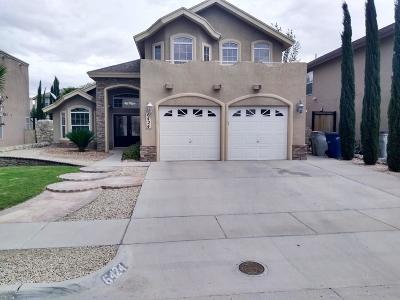 El Paso Single Family Home For Sale: 6424 Berringer Street