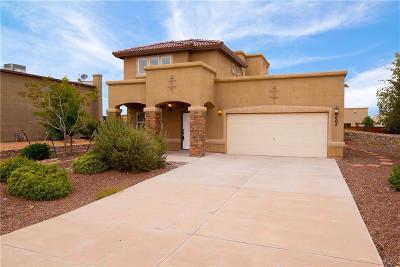 El Paso Single Family Home For Sale: 605 Valley Plum Avenue
