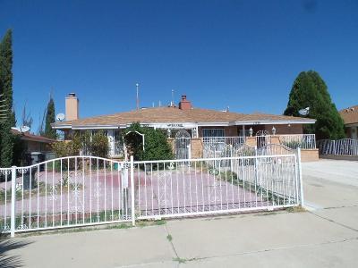 El Paso Single Family Home For Sale: 1933 Estrada Drive