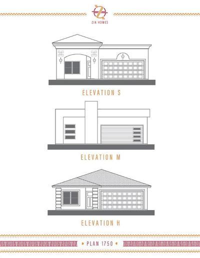 Single Family Home For Sale: 12004 Mesquite River Avenue