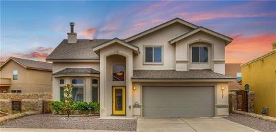 El Paso TX Single Family Home For Sale: $205,000