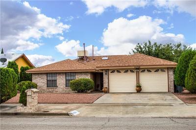 El Paso Single Family Home For Sale: 11124 Tahoka Avenue