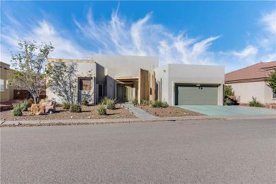 El Paso Single Family Home For Sale: 6027 Laguna Vista Drive