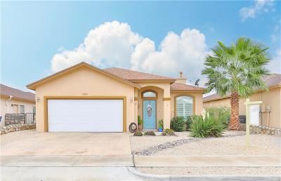 Single Family Home For Sale: 11333 Charles Maiz Lane