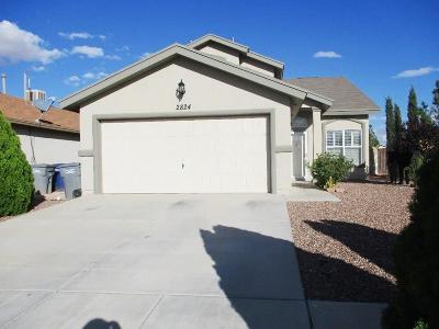 El Paso Single Family Home For Sale: 2824 Wonder Rock Place