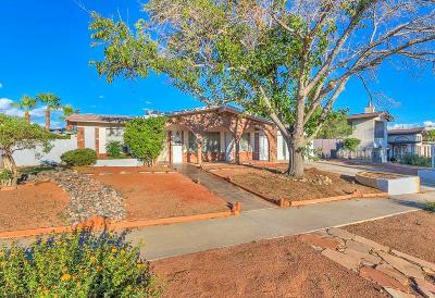 El Paso Single Family Home For Sale: 10845 Sombra Verde Drive