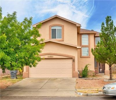 Single Family Home For Sale: 11021 Bullseye Street