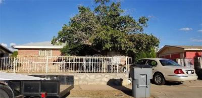 El Paso Single Family Home For Sale: 9028 Mount Shasta Drive