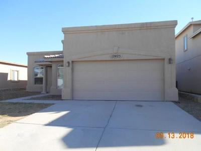 El Paso Single Family Home For Sale: 12425 Jon Evans Drive