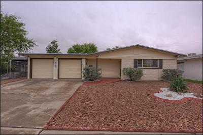 El Paso Single Family Home For Sale: 9524 Blue Wing Drive