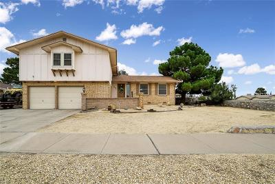 El Paso Single Family Home For Sale: 1600 Larry Wadkins Drive