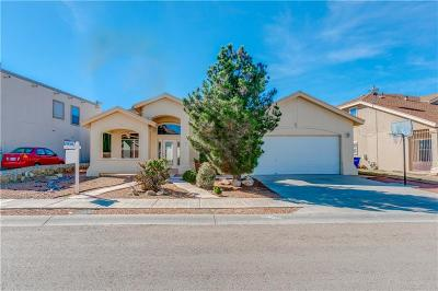 El Paso Single Family Home For Sale: 3721 Tierra Isela