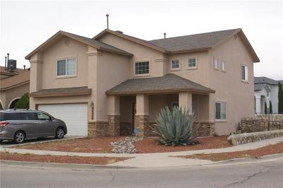 Horizon City Single Family Home For Sale: 14200 Desert Ash Drive