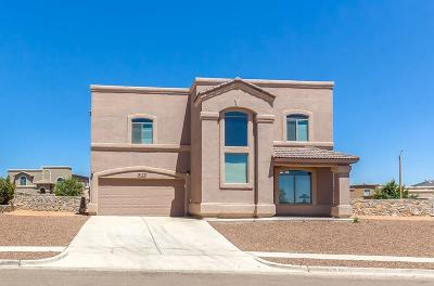 El Paso Single Family Home For Sale: 3170 Samantha Rae Place