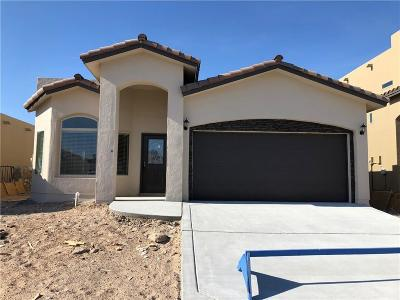 El Paso TX Single Family Home For Sale: $178,500