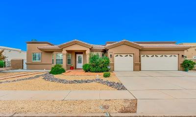 El Paso Single Family Home For Sale: 720 Maxey Marie