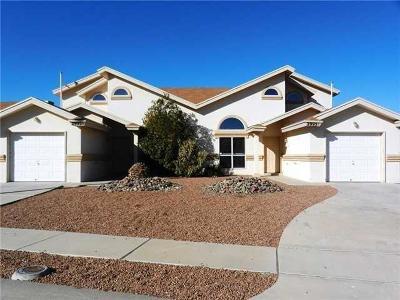 El Paso TX Multi Family Home For Sale: $255,000