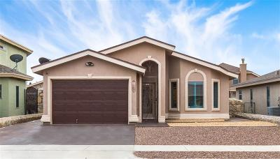 El Paso Single Family Home For Sale: 13024 Martin Forman Court