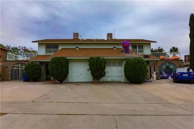 Multi Family Home For Sale: 1536 Common Drive #B