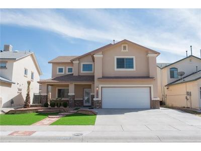 El Paso Single Family Home For Sale: 12800 Tierra Alexis Drive