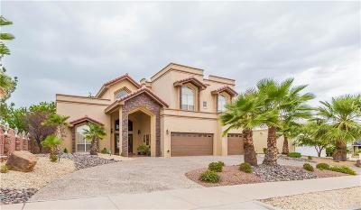 El Paso Single Family Home For Sale: 1329 Whirlaway