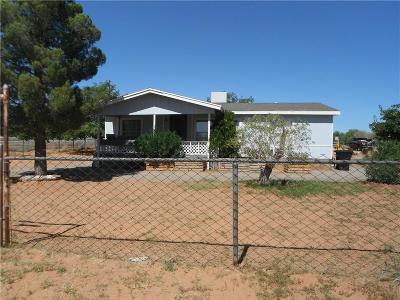 El Paso Single Family Home For Sale: 14671 Big John Drive